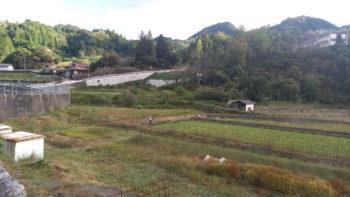 広島市安佐南区 建築設計事務所 かんくう建築デザイン 小河内の畑