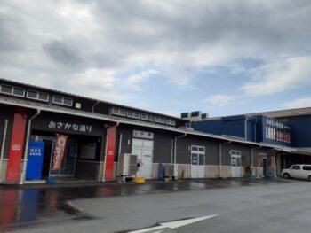 ウチワエビ~広島の建築設計ブログ~