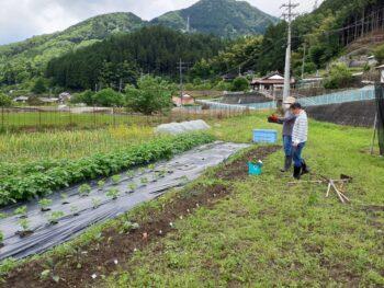 広島市安佐南区 建築設計事務所 かんくう建築デザイン 農作業